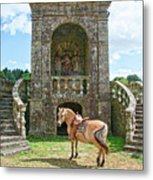 Quelven Village Square, Awaiting His Owner, Brittany, France Metal Print