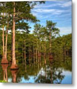 Quiet Afternoon At The Bayou Metal Print