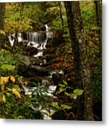 Quiet Autumn Stream Metal Print