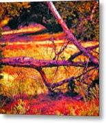 Quiet Meadow Metal Print