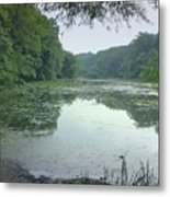 Quiet Reflections Metal Print