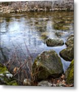 Quiet Reverie Metal Print