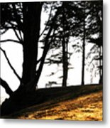Quiet Time Of Day Metal Print