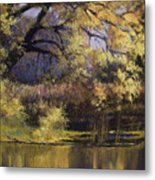 Quiet Waters Metal Print by Vicky Russell
