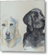 Quincy And Bodie Metal Print