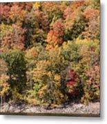Quinnipiac River Color Metal Print
