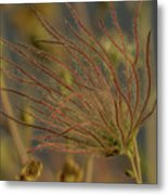 Quirky Red Squiggly Flower 4 Metal Print
