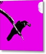 Quoth The Raven Nevermore . Magenta Metal Print