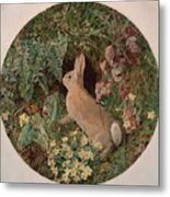 Rabbit Amid Ferns And Flowering Metal Print