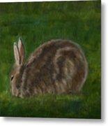 Rabbit In Spring Metal Print