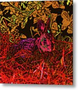 Rabbit Red Metal Print