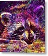 Raccoon Wild Animal Furry Mammal  Metal Print