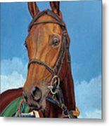 Radamez - Arabian Race Horse Metal Print