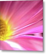 Radiant Glory Metal Print