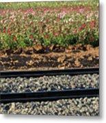 Rails And Roses Metal Print