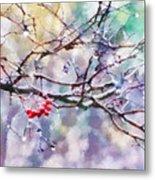 Rain Berries Metal Print