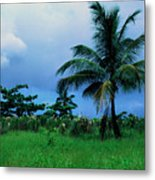 Rain Cloudsover Dominica Metal Print by Thomas R Fletcher