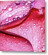 Rain Drop Jewels  Metal Print
