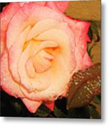 Rain Flower Rose Metal Print