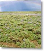 Rainbow And Lupine, Grand Teton Nm, Wyoming Metal Print