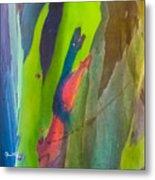 Rainbow Eucalyptus 7 Metal Print