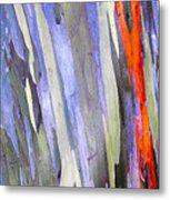 Rainbow Eucalyptus Tree Metal Print