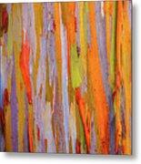 Rainbow Eucalytpus Metal Print