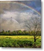 Rainbow Field Metal Print