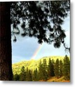 Rainbow In Pine Country Metal Print