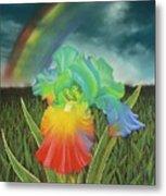 Rainbow Iris Metal Print