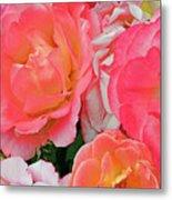 Rainbow Of Roses Metal Print