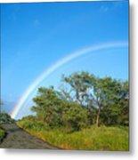 Rainbow Over Treetops Metal Print