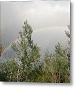 Rainbow Past The Treeline Metal Print