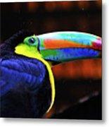 Rainbow Toucan Metal Print