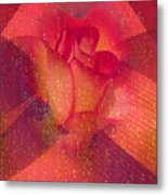 Raindrops On A Beautiful Rosebud Metal Print