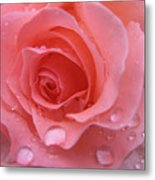 Raindrops On Roses And..... Metal Print