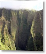 Rainforest Aerial View Metal Print