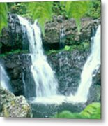 Rainforest Waterfalls Metal Print