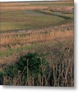 Rainham Marshes Metal Print