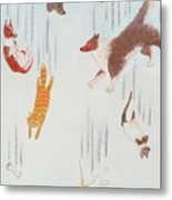 Raining Cats And Dogs Metal Print