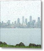 Rainy Skyline D040 Metal Print