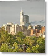 Raleigh Nc Panoramic Metal Print