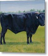 Ralphs Bull Metal Print