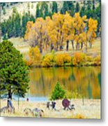 Ranch Pond In Autumn Metal Print