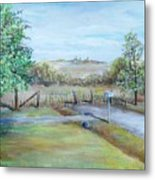 Ranch Rd Metal Print