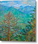 Ranges By Arnold Valley Metal Print