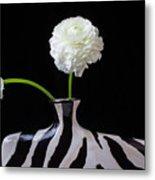 Ranunculus In Black And Whie Vase Metal Print