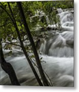 Rapids In Forest  Metal Print