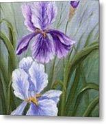 Rapsody Iris Metal Print