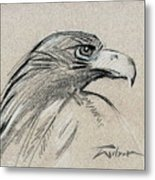 Raptor Two Metal Print
